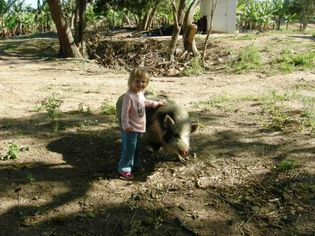 160613 Linton Animal Farm Friends